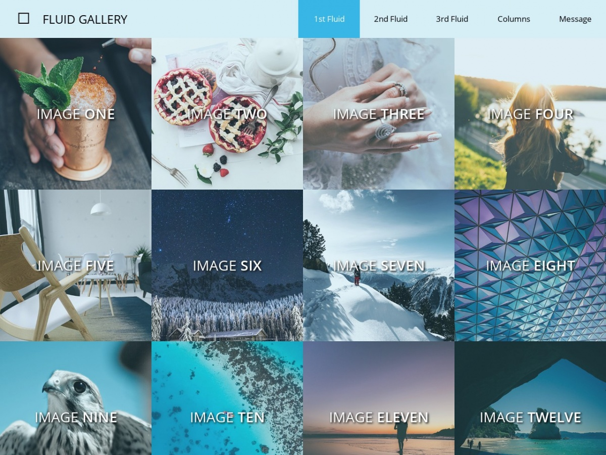 Free Simple Web Template Fluid Gallery